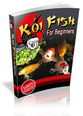 Jap koi japanese koi carp jap koi com nishikigoi koi for Koi fish price guide